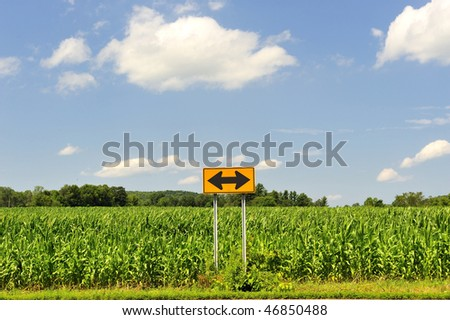 Which way should I go? Two-way sign in cornfield with beautiful blue sky and cumulus clouds. Decision making indecision uncertainty business and personal growth concepts - stock photo