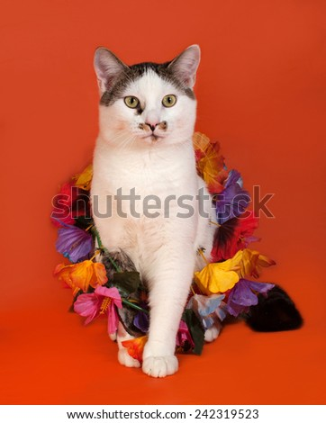 White and tabby cat wrapped Christmas tinsell sitting on orange background - stock photo