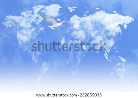 White bird flying around world map of clouds.  - stock photo