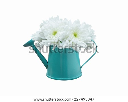 White bouquet flowers in watering can isolated - stock photo
