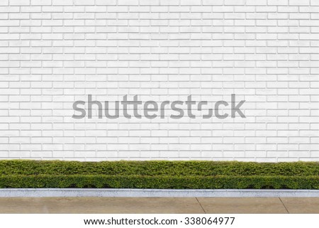 white brick wall with ornamental trees for background - stock photo