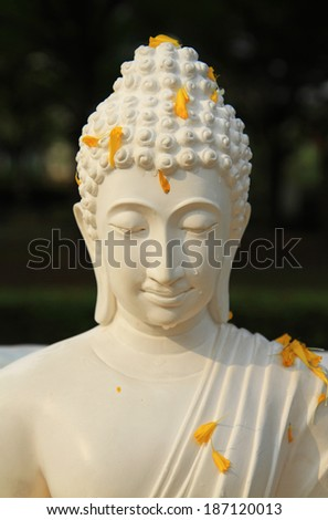 White buddha statue with petal and drop of water on face  - stock photo