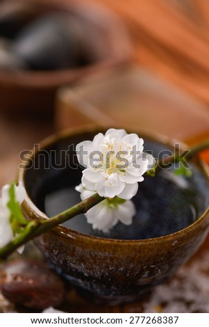 White Cherry on bowl and stones ,pile of salt on old wood - stock photo