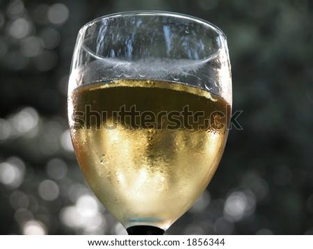 White chilled wine in a garden. - stock photo