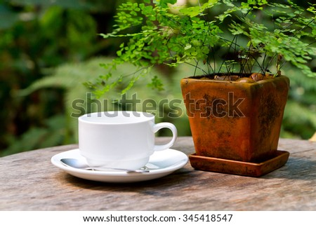 white coffee on the table with small tree in flowerpot - stock photo