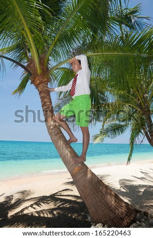 white collar worker climbing on palm tree to get a better view - stock photo
