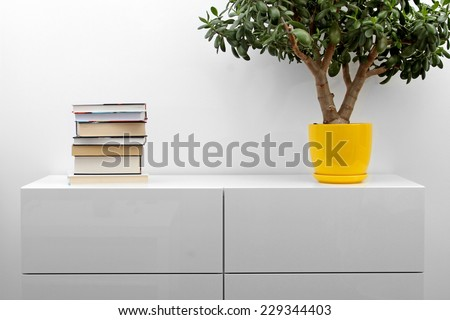 white commode with stack of books and flower pot in bright minimalism interior - stock photo