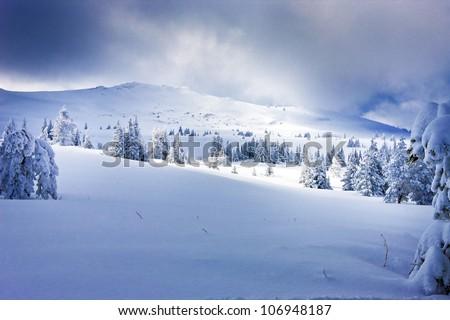 white contrast - stock photo
