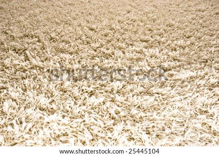 White/Cream colored shag carpet 1 - stock photo