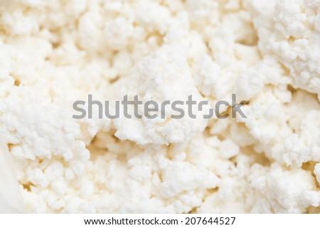 white curd as background. macro - stock photo
