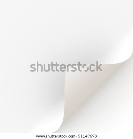 white curled paper - stock photo