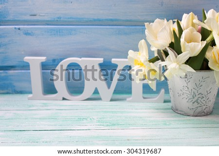 White daffodils and tulips  flowers in bucket and word love on turquoise  painted wooden planks against blue wall. Selective focus. Place for text.  - stock photo