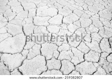 white Dry land. Cracked ground background. - stock photo
