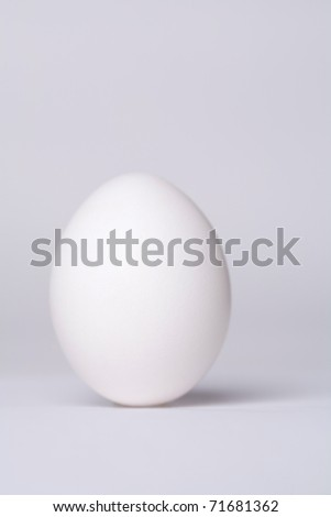 White egg - stock photo