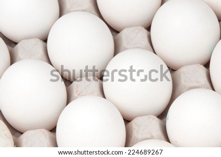 white eggs, background - stock photo