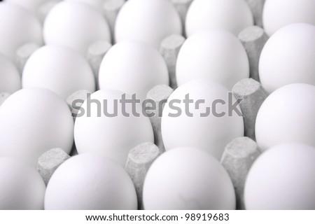 white eggs in the box - stock photo