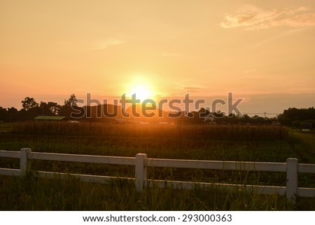 White fence on the meadow. Summer landscape - stock photo