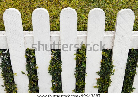 white fence with green hedge at a small house garden - stock photo