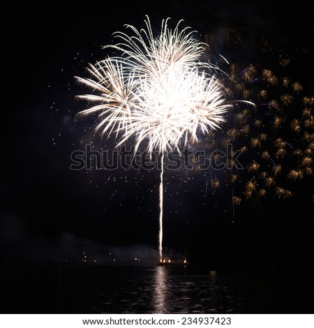 White fireworks on the black sky background - stock photo
