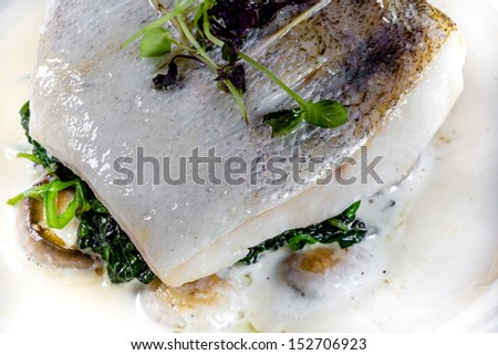 White fish in creamy sauce with spinach - stock photo