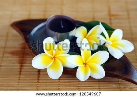 White frangipani flower on bamboo mat. Spa & aromatherapy concept. - stock photo