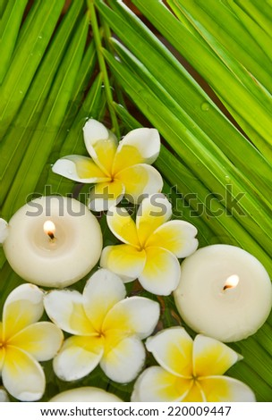 White frangipani with candle and wet palm leaf  - stock photo
