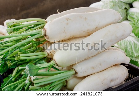 white fresh radishes on wood table in market,Organic local daikon radish vegetables for sale at outdoor asian marketplace - stock photo