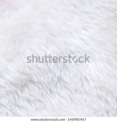 White fur texture for background usage - stock photo