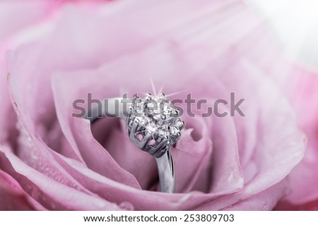 White gold ring with diamonds  inside tender pink rose petals - stock photo