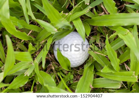 White golf ball drop in heavy rough, concept for difficult trouble - stock photo