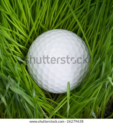 White Golf Ball tangled in Tall Grass - stock photo