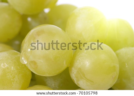 White grapes with water drops. Studio macro shot - stock photo