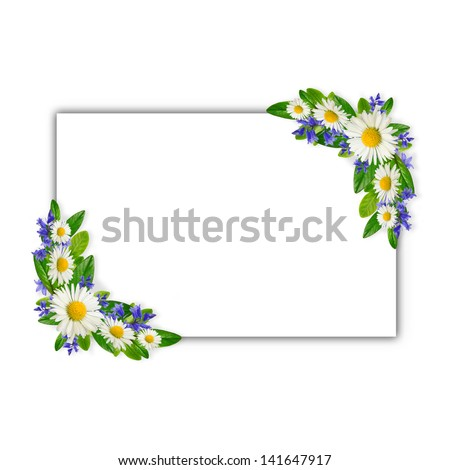 White horizontal frame with wild flowers - stock photo