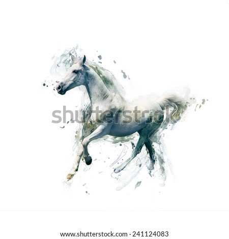 White horse, abstract animal concept isolated on white. Can be used for wallpaper, canvas print, decoration, banner, t-shirt graphic, advertising. - stock photo