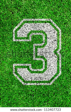 White line number on green grass (1 2 3 4 5 6 7 8 9 0) - stock photo