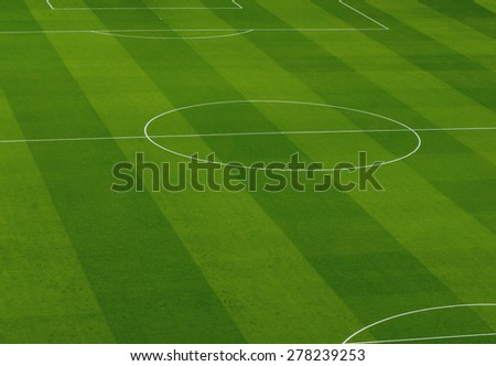 White lines on a professional soccer playground - stock photo