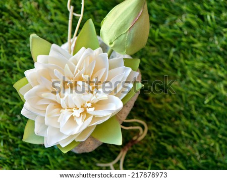 White Lotus Water Lily on Green Grass as seen from Above - stock photo