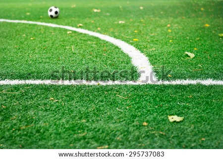 White mark line on green grass field soccer in the park, selective focus mark line - stock photo