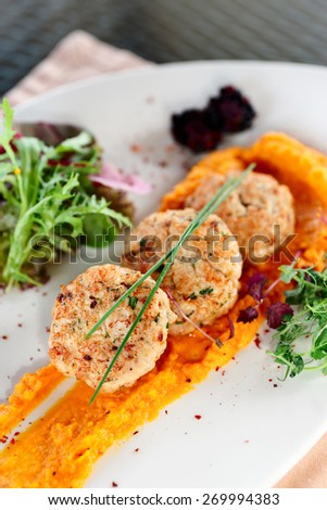 White meat patty cakes with pumpkin mash - stock photo