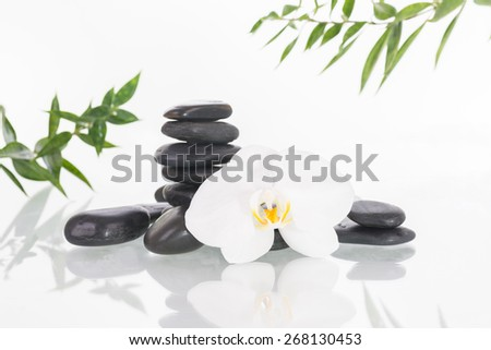 White Moth orchid with black zen stones over white background - stock photo