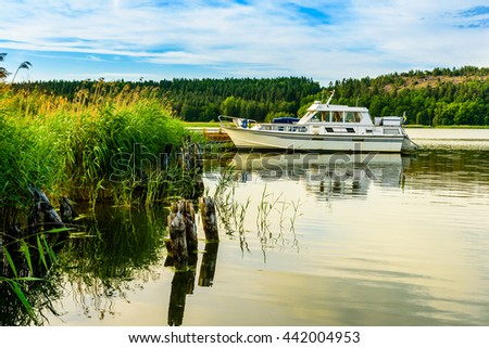 White motorboat moored in lovely nature surroundings with reeds and forest in late afternoon. - stock photo