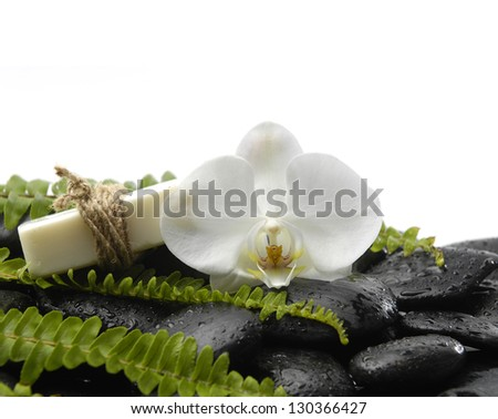 White orchid with green fern and soap on wet pebbles - stock photo