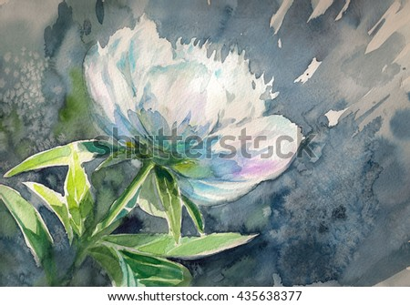 White peony flower on dark background.Picture created with watercolors. - stock photo