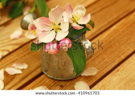 White pink Apple flowers and buds in metal zinc grey small flower garden watering can on a brown wooden background with white fallen petals, shallow dof - stock photo