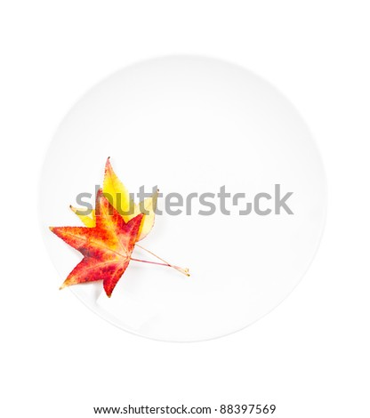 White plate with leaves - stock photo