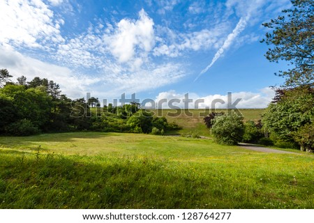 White puffy clouds and sunshine over green grass and trees - stock photo