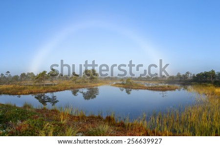 White rainbow appears in a misty morning after the sunset. - stock photo