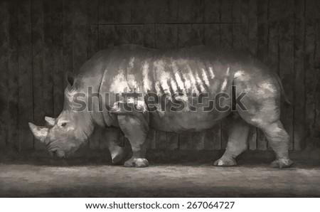 White rhino walking under the roof - stock photo