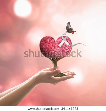 White ribbon on red love heart tree with butterfly on woman's hands on blurred abstract background of orange autumn leaves: International Day for the Elimination of Violence against Women concept  - stock photo