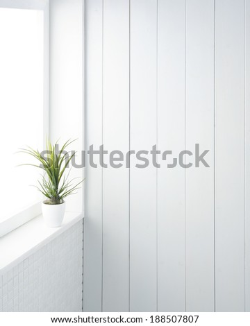 white room with houseplant - stock photo